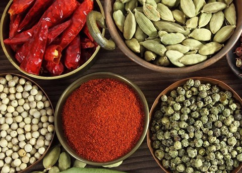 Flavours of North India