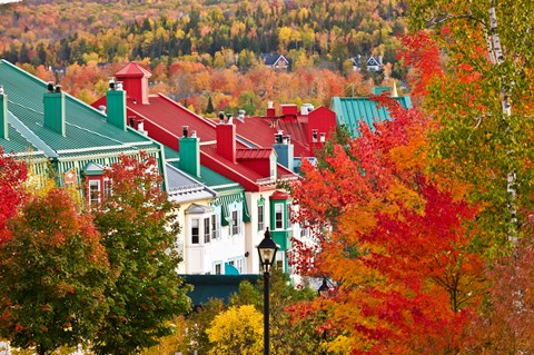 Fall Colours of Ontario and Quebec