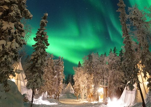 Northern Lights of Aurora Village